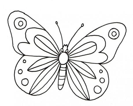 Motyl1